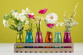 Flowers in colorful vases — Stock Photo