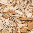 Stock Photo: Bark mulch