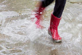 Gum boots in the rain — Stock Photo