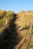 Sanded path to the beach — Stock Photo