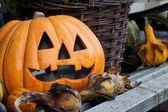 Stilleven halloween — Stockfoto