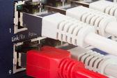 Network switch — Stock Photo