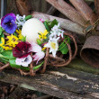 Old bench with easter basket — Stock Photo