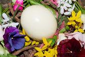 Pasqua cesto closeup — Foto Stock