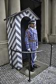 Guard in Uniform — Stock Photo