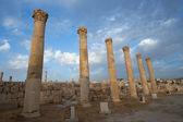 City greco-roman of Jerash — Stock Photo