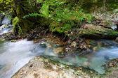 River in Ojo Guareña — Stock Photo
