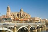 View of Salamanca, Castilla y Leon (Spain) — Stock Photo