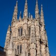 Tower of the Cathedral of Burgos, Castilla y Leon, Spain - 图库照片
