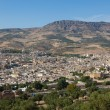 Panoramic of Fez, Morocco — Stock Photo #8009826