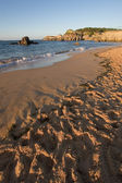 Camel Beach in Santander, Cantabria, Spain — Stock Photo