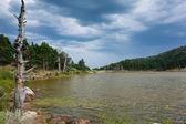 Lac des canards, des lacs de neila, burgos, castilla y leon, espagne — Photo