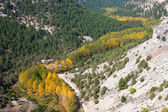 Canyon of the river wolves, Soria, Castilla y Leon, Spain — Stock Photo