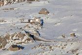 Refuges in the mountain, Larra-Belagua, Navarra, Spain — Stock Photo