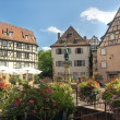 Colmar France — Stock fotografie #8612217
