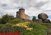 The fortress town of Savonlinna — Stock Photo