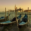 Venetian gondolas — Stock Photo #8738769