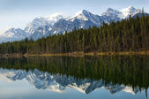 Reflexo no lago esmeraldo — Foto Stock