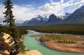 The mighty Canadian Rockies — Stock Photo