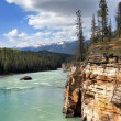 River in the valley — Stock Photo
