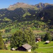 Pastoral Switzerland - Stock Photo