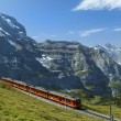 Railways in the Swiss Alps — Stock Photo