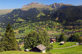 Pastoral Switzerland — Stock Photo