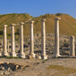 Roman columns in Israel Beit Shean — Stock Photo