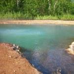 Берег термального озера/ Thermal lake in Nalychevo — Stock Photo