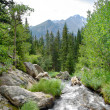 Mountain Stream — Stock Photo #8459718