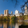 Central Park , Manhattan. - Stock Photo
