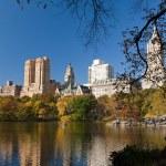 曼哈顿中央公园 — 图库照片