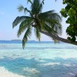 Maldive — Stock Photo