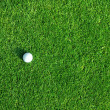 Stock Photo: Golf ball on the green