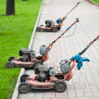 Old Lawnmowers - Stock Photo