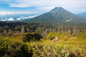 Gunung Merapi Volcano — Stock Photo