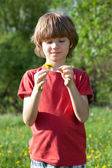 Boy with dandelion in the hands of — Stock Photo