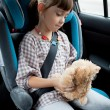 Stock Photo: The little girl sits in a car