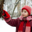 Little girl is considering tree — Stok Fotoğraf #8486091