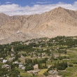Leh - Capital of Ladakh, India — Stock Photo #10059122