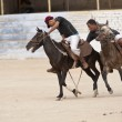 High Altitude Polo Match — Foto de Stock