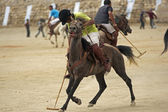 Playing Polo in Ladakh — Stock Photo