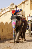 Mahout and Decorated Elephant at Amber Fort — Stock Photo