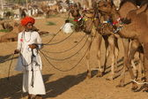 Pushkar Camel Fair — Stock Photo