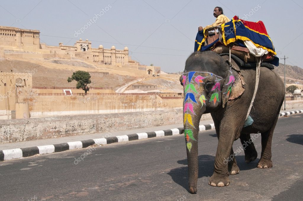 Decorated elephant on the road at Amber Fort in Jaipur, Rajasthan, India. — Stock Photo #7989285