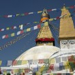 boudhanath stupa — Stock Photo #8012729