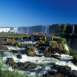 Iguacu Falls — Stock Photo #8022984