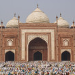 Worship at the Taj Mahal - Foto de Stock