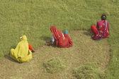インドの草カッター — ストック写真