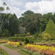 Botanic Gardens — Stock Photo #8283476